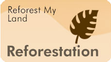 Reforest My Land